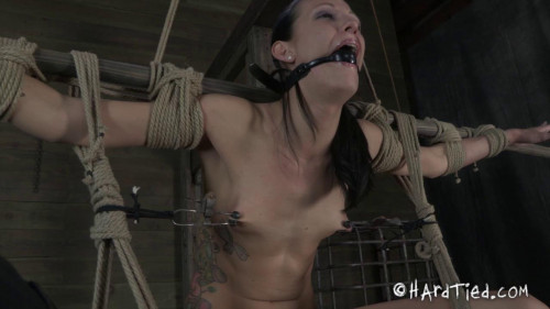 BDSM HT - A Strong Vibration - Hailey Young