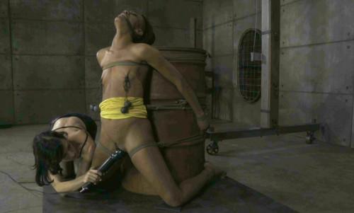 bdsm My Time In The Barrel - Nikki Darling