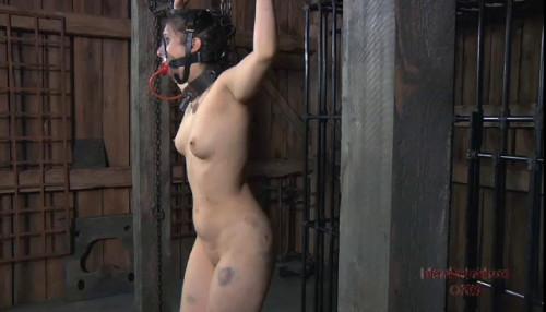 BDSM Infernal Restraints Vip Gold Sweet Beautifull Perfect Collection. Part 1.