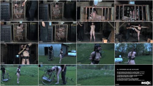 BDSM Pony Rides