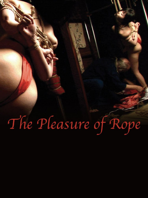 BDSM The Pleasure of Rope