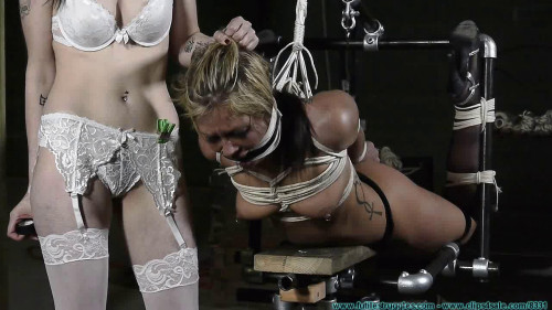 bdsm Dr. Cupcakes Gets A New Assistant Part 2