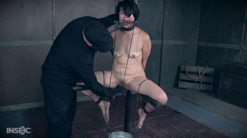 BDSM Buckets of Fun - Mia Torro