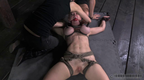 BDSM Bent Back Bitch - Darling, Penny Barber