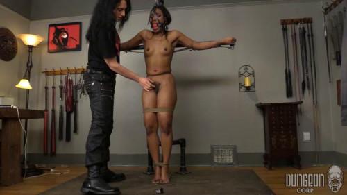 BDSM Bound and Begging Slut part 1