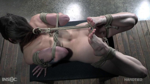 BDSM Zoey Laine (In Your Laine