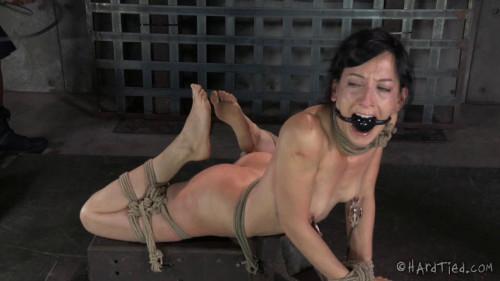 BDSM HT - Bondage Therapy - Elise Graves, Jack Hammer