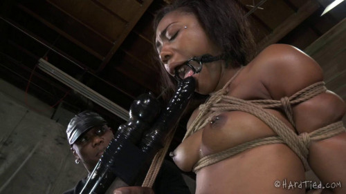 BDSM Bitch In A Bag - Chanell Heart, Jack Hammer