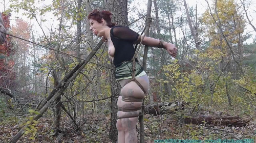 BDSM HD Bdsm Sex Videos The Woods and Tree Tied Part 3