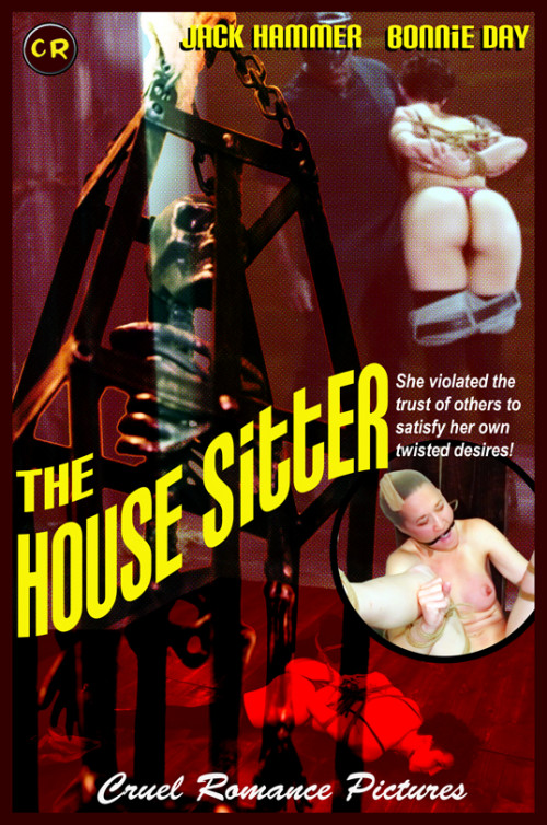 BDSM The House Sitter