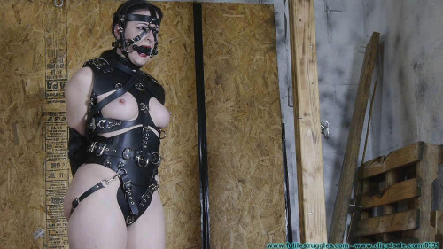 BDSM He wanted a Pony Girl for Christmas - Caroline Pierce - Scene 4 - HD 720p