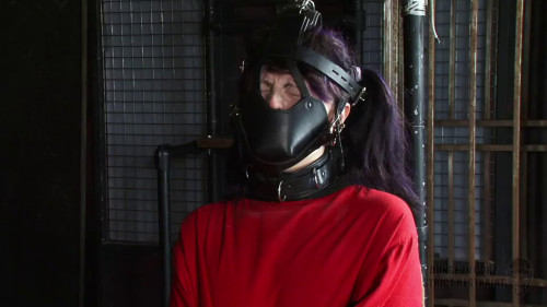 BDSM Latex Extreme bondage, domination, torture and strappado for young slut