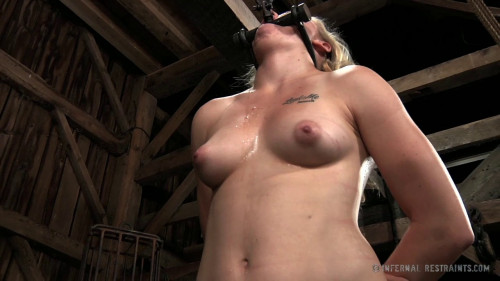 bdsm Sweet Surrender - Tracey Sweet