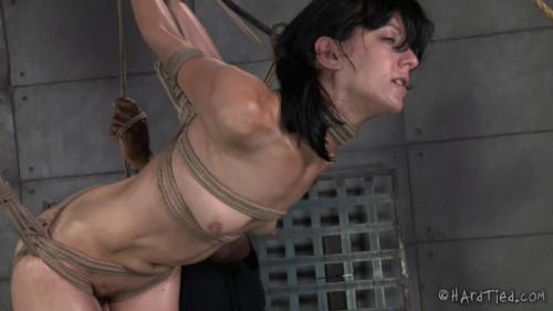 BDSM Bondage Therapy Part 2 - Elise Graves, Jack Hammer