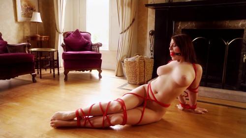 BDSM Experts of Elegance Bondage Part 2