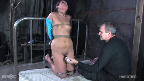 BDSM Jade Indica - Player