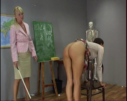 BDSM School Days vol. 22