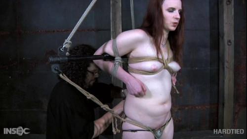 BDSM DeClaireation