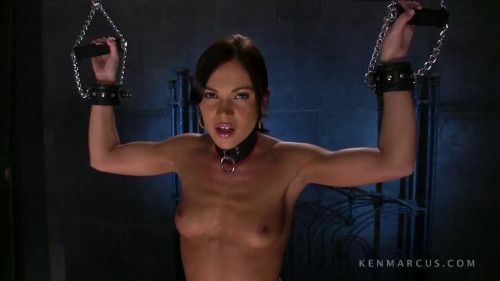 BDSM Alyssa Reece on the Sybian - HD 720p