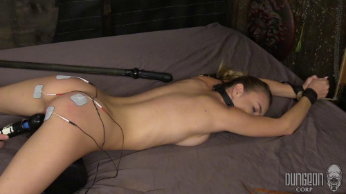 BDSM Beast Punishing Beauty part 3