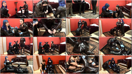 Femdom and Strapon Rubber Puppy Anal Stretching FemDom Foursome