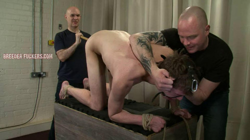 Gay BDSM Bound naked on all fours for Aiden