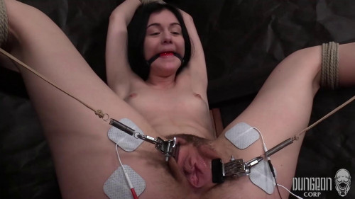 BDSM The Tiny Submissive