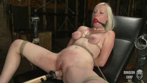 BDSM Stripped, Shaved and Bound part 2