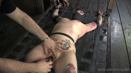 BDSM Pricked Part 2 - Mollie Rose, Cadence Cross.