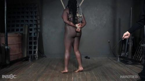 BDSM Sterling Times