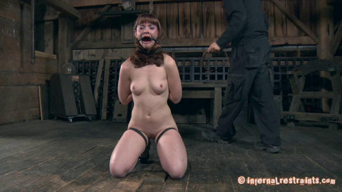 BDSM Back to the Barn