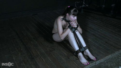 BDSM Rigid Restraints