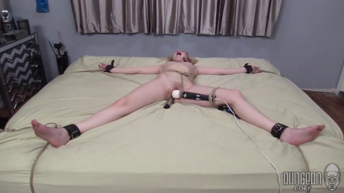 BDSM The Submissive Specimen Pt.2