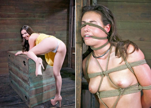 bdsm Training Time Now