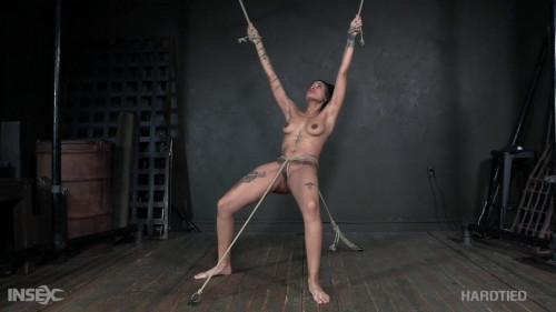 BDSM R.E.Zee
