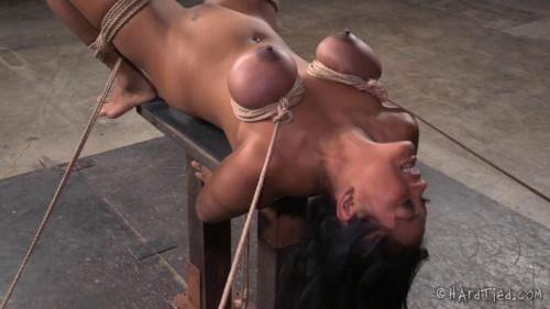 BDSM X Marks the Spot - Maxine X, Jack Hammer