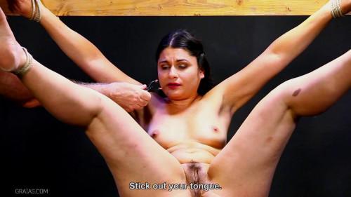 BDSM The Complaint vol.1