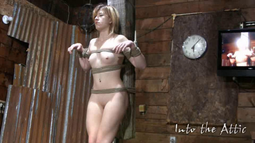BDSM Mega Unreal Wonderfull Sweet Vip Collection Into The Attic. Part 1.