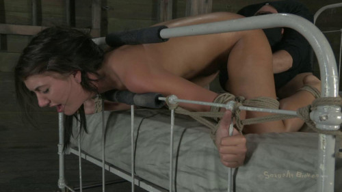 BDSM Ass Up, Mouth Out-rough bdsm porn