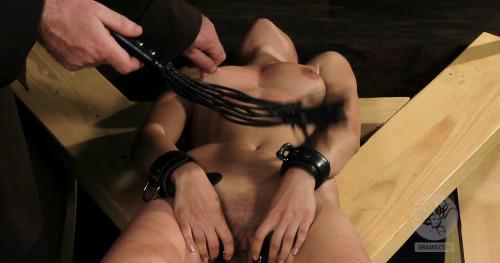 BDSM The Training Part 1