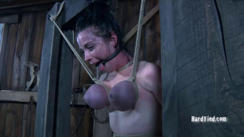 BDSM Sybil Hawthorne - Dairy Pillows