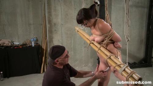 BDSM Bamboo Prison