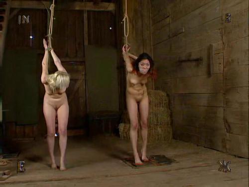 BDSM Insex - No Escape