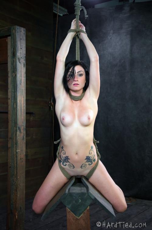 BDSM HT - Presenting Veruca James - Veruca James and Cyd Black - HD