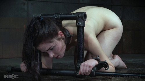 bdsm On Display