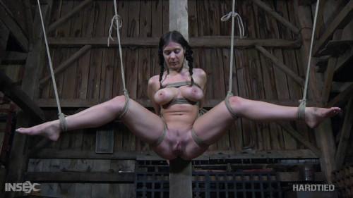 BDSM Beverly Hills, S. Dee Catch