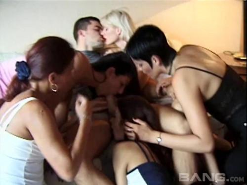 Euro Babes  vol.5