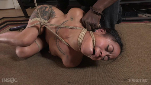 bdsm Chillycarlita - The Curious Artist Part 2 (2016)