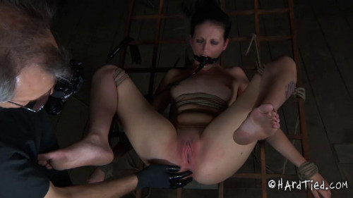 BDSM Helpless Panic Part Two - Hailey Young