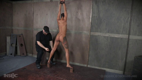 BDSM Nikki Darling